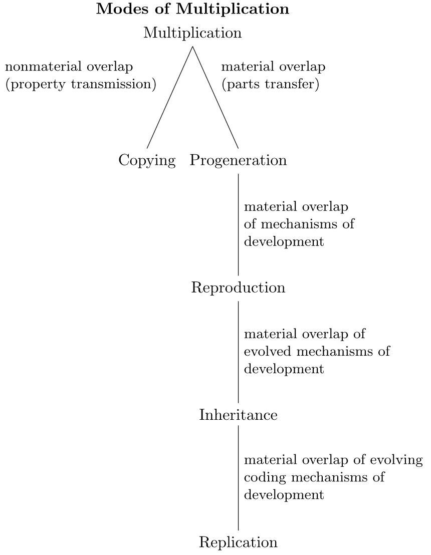 Replication and Reproduction