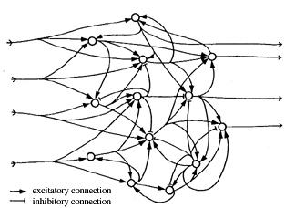 Quantum Approaches to Consciousness