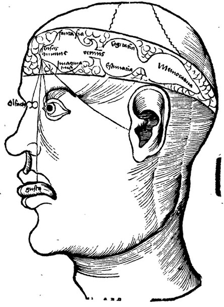 Descartes and the Pineal Gland (Stanford Encyclopedia of Philosophy)